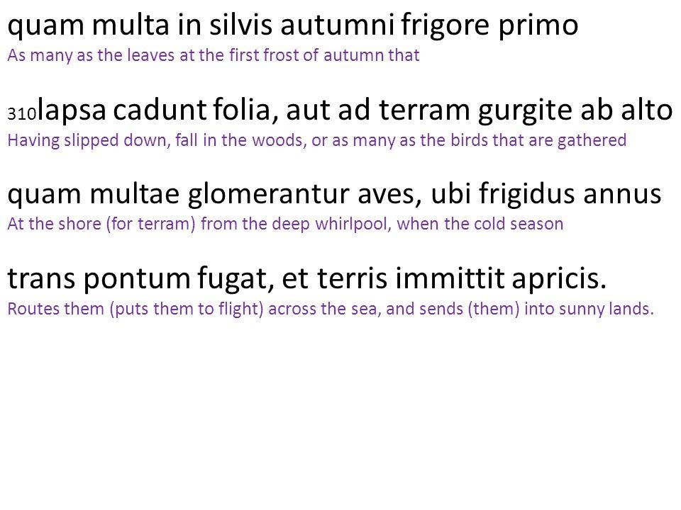 quam multa in silvis autumni frigore primo