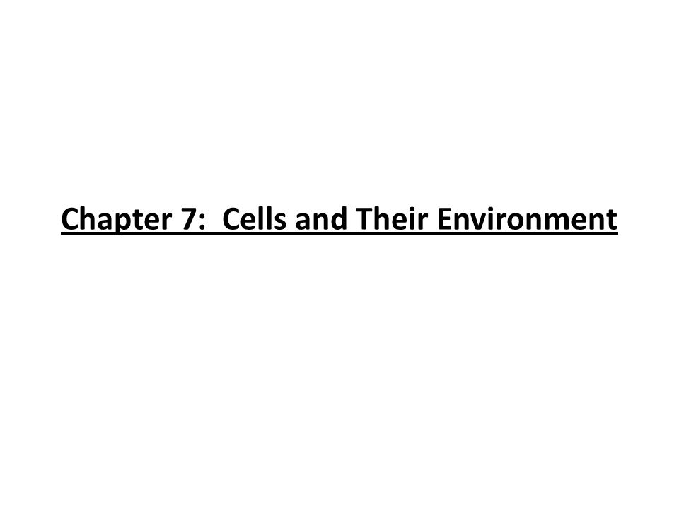Chapter 7: Cells and Their Environment