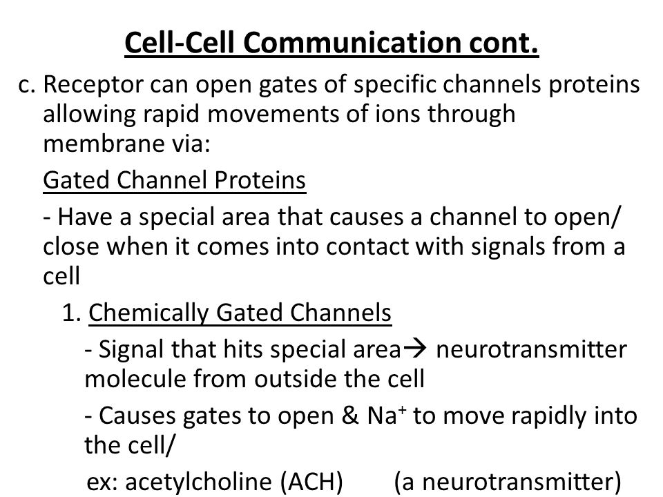 Cell-Cell Communication cont.
