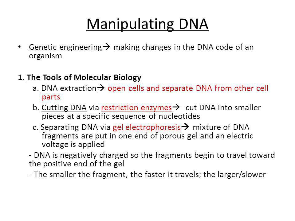 Manipulating DNA Genetic engineering making changes in the DNA code of an organism. 1. The Tools of Molecular Biology.