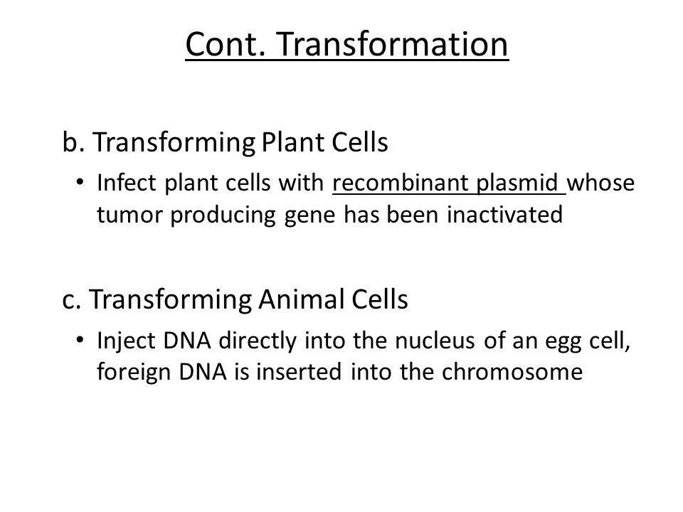 Cont. Transformation b. Transforming Plant Cells