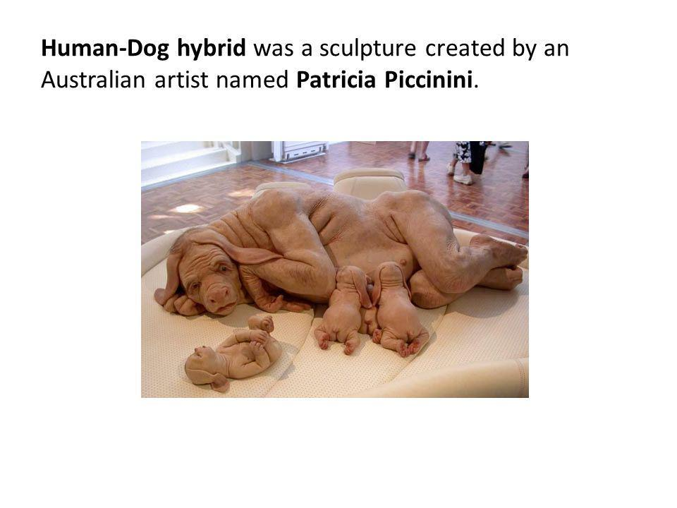 Human-Dog hybrid was a sculpture created by an Australian artist named Patricia Piccinini.