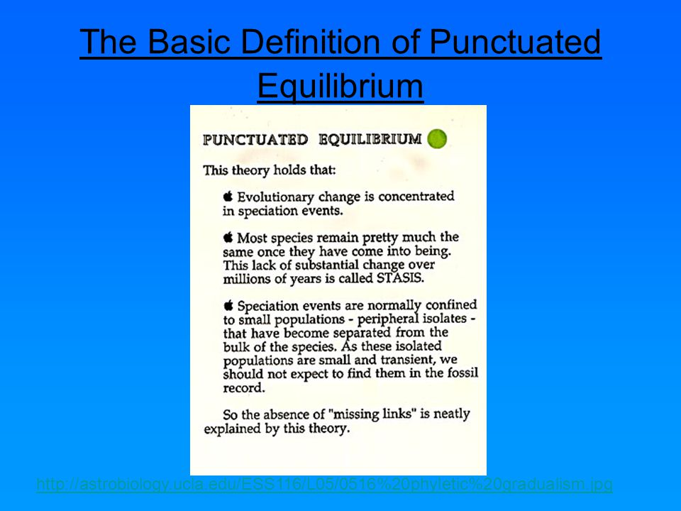 The Basic Definition of Punctuated Equilibrium