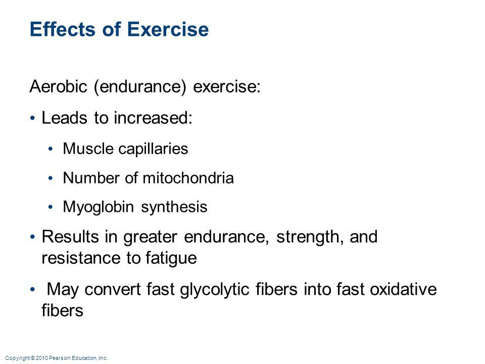 Effects of Exercise Aerobic (endurance) exercise: Leads to increased: