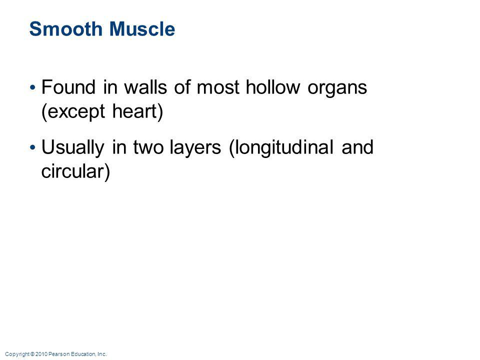 Smooth Muscle Found in walls of most hollow organs (except heart) Usually in two layers (longitudinal and circular)
