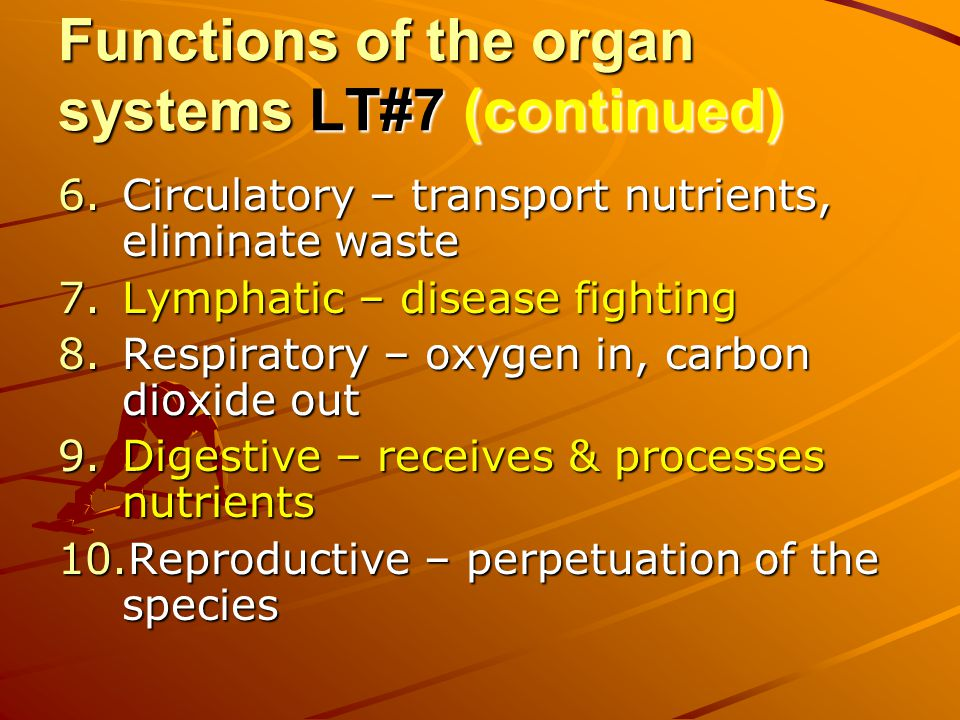 Functions of the organ systems LT#7 (continued)