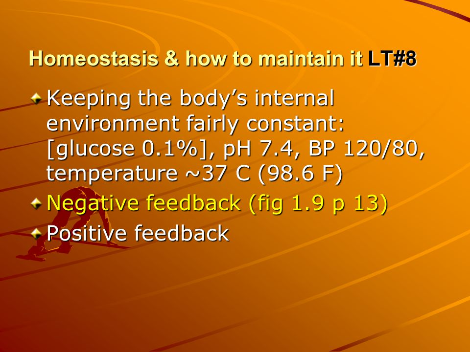 Homeostasis & how to maintain it LT#8