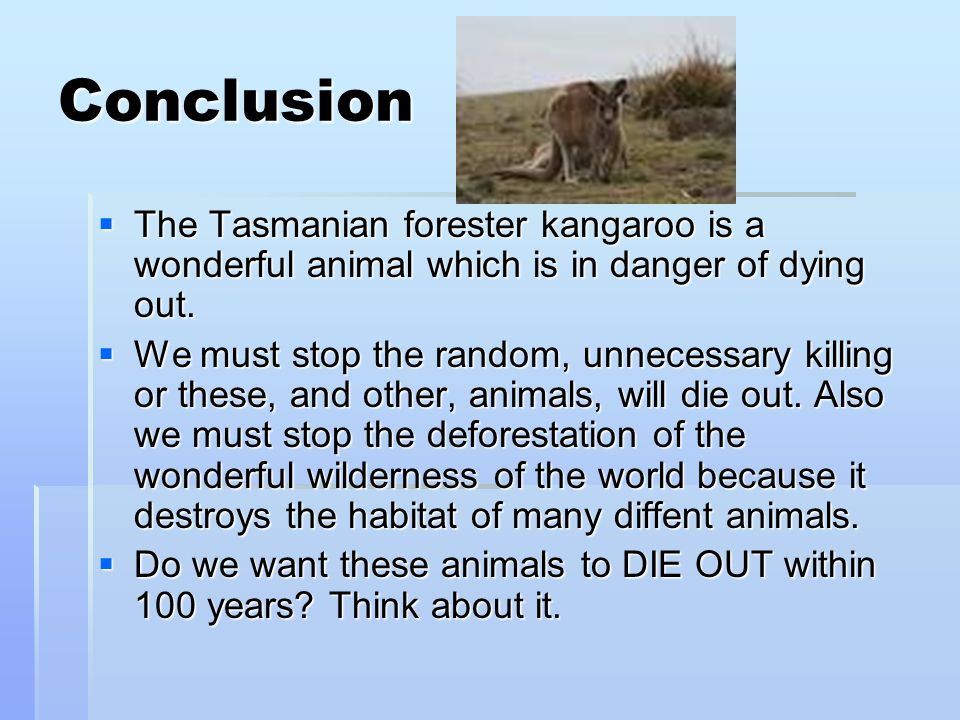 Conclusion The Tasmanian forester kangaroo is a wonderful animal which is in danger of dying out.