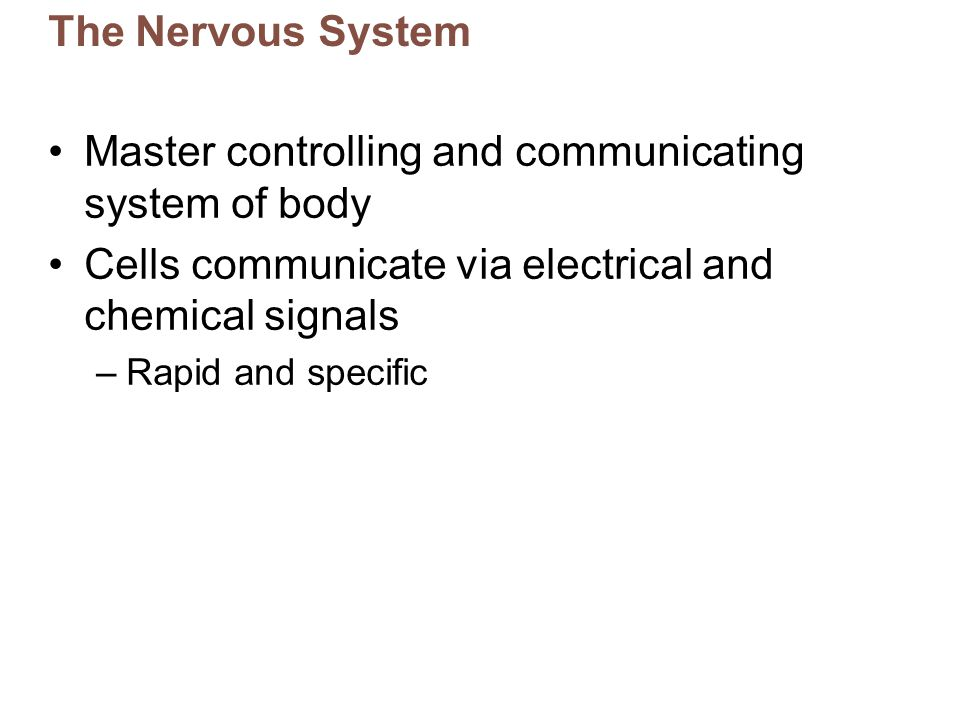 Master controlling and communicating system of body