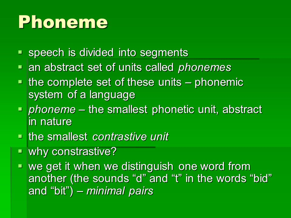 Phoneme speech is divided into segments