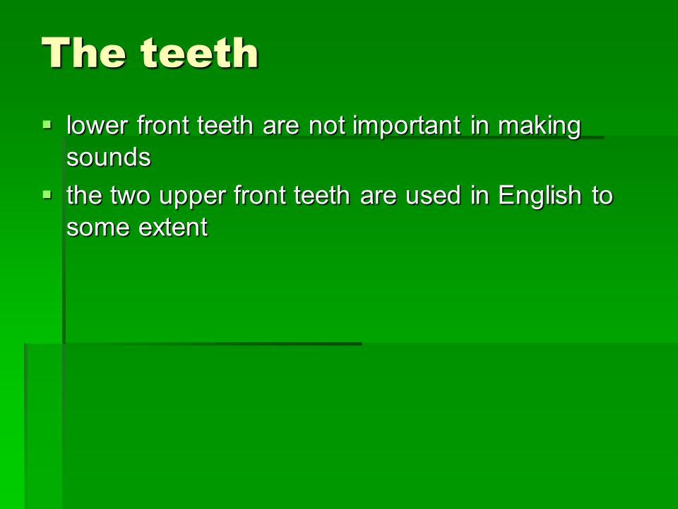The teeth lower front teeth are not important in making sounds