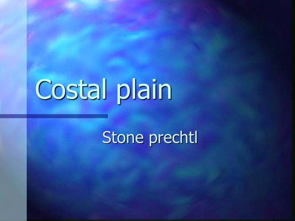 Costal plain Stone prechtl