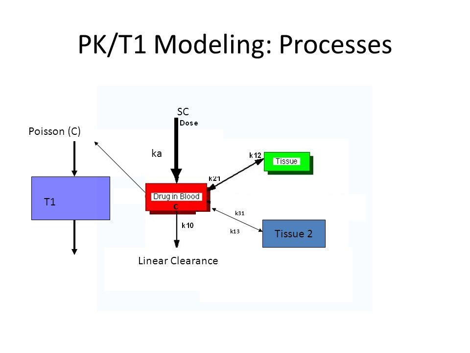 PK/T1 Modeling: Processes