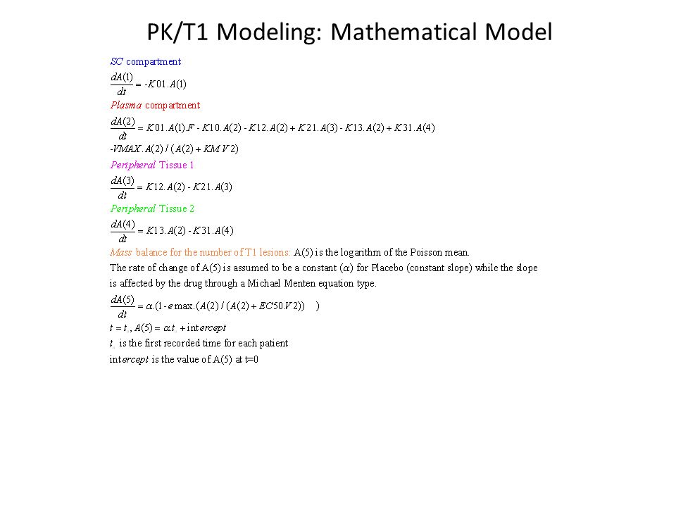 PK/T1 Modeling: Mathematical Model