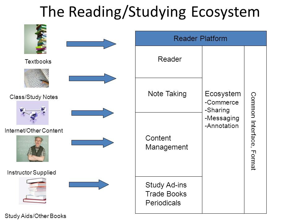 The Reading/Studying Ecosystem