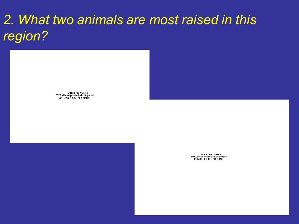 2. What two animals are most raised in this region