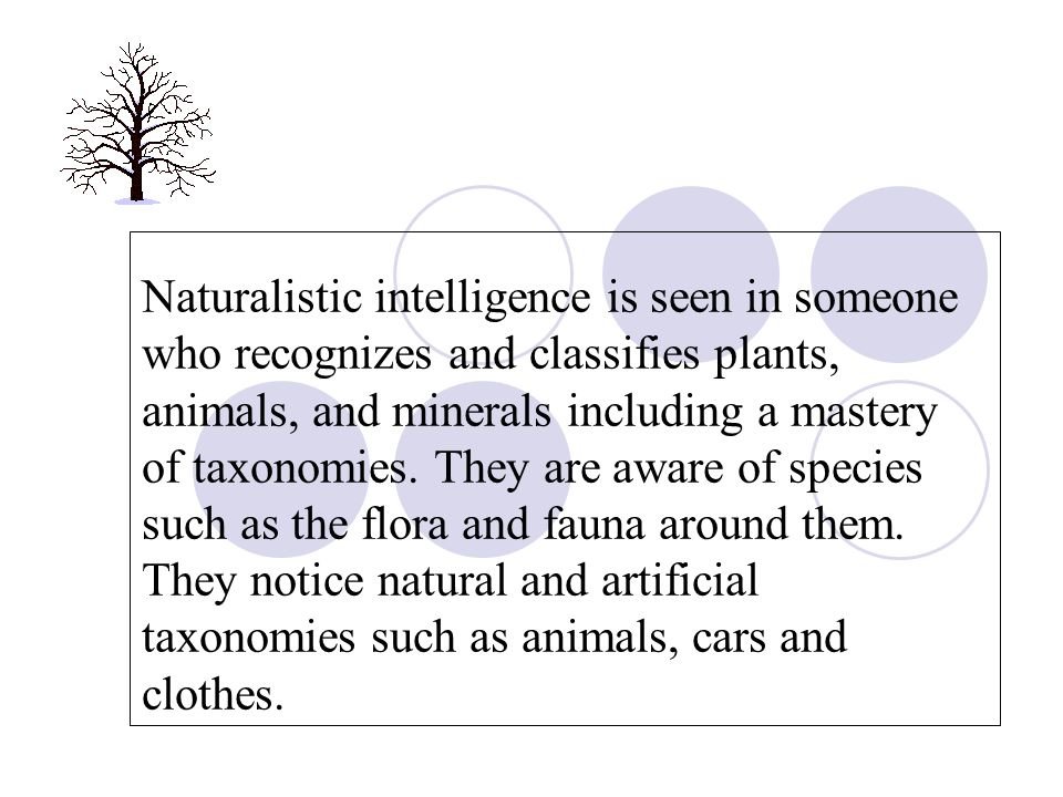 Naturalistic intelligence is seen in someone who recognizes and classifies plants, animals, and minerals including a mastery of taxonomies.