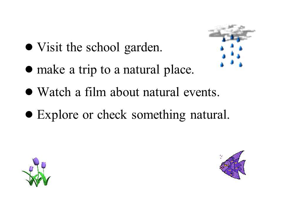● Visit the school garden.