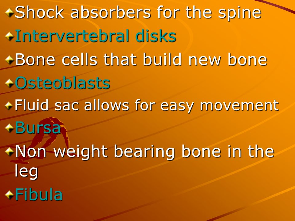 Shock absorbers for the spine Intervertebral disks