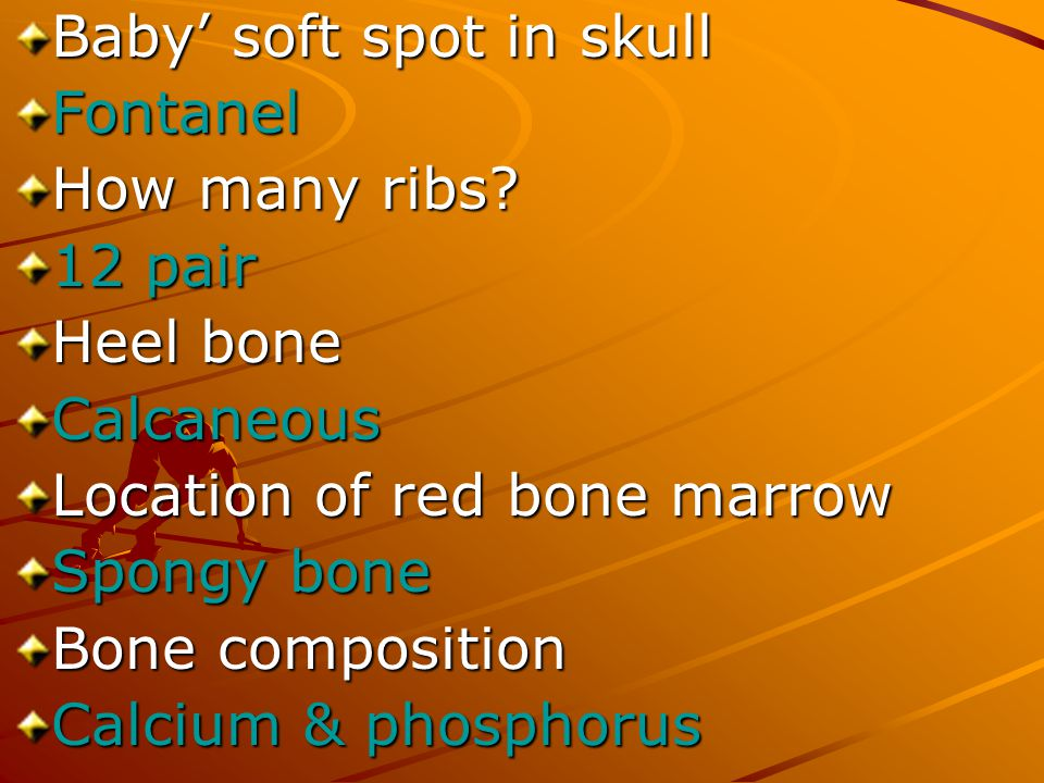 Baby' soft spot in skull