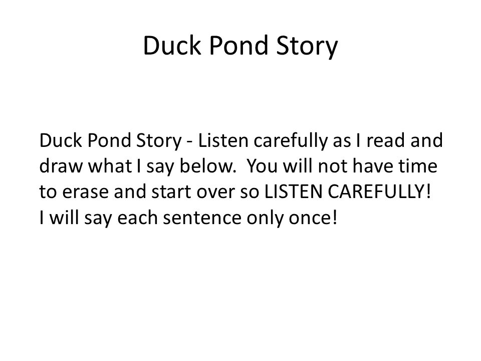 Duck Pond Story