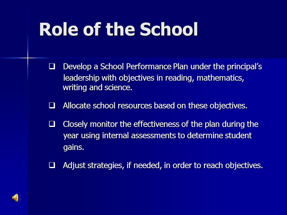 Role of the School Develop a School Performance Plan under the principal's.