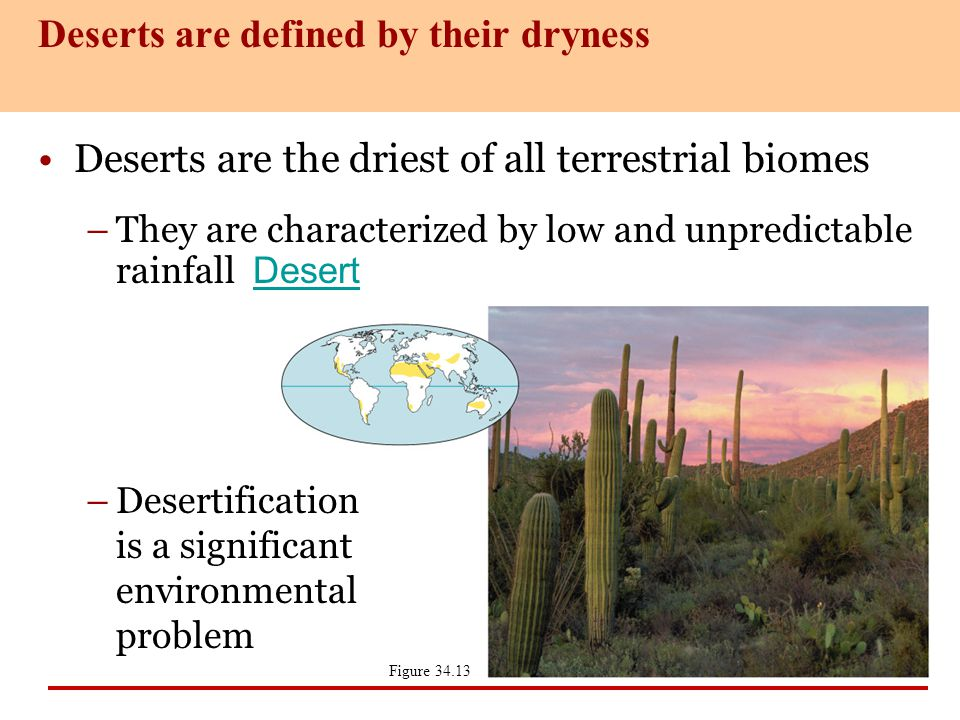 Deserts are defined by their dryness