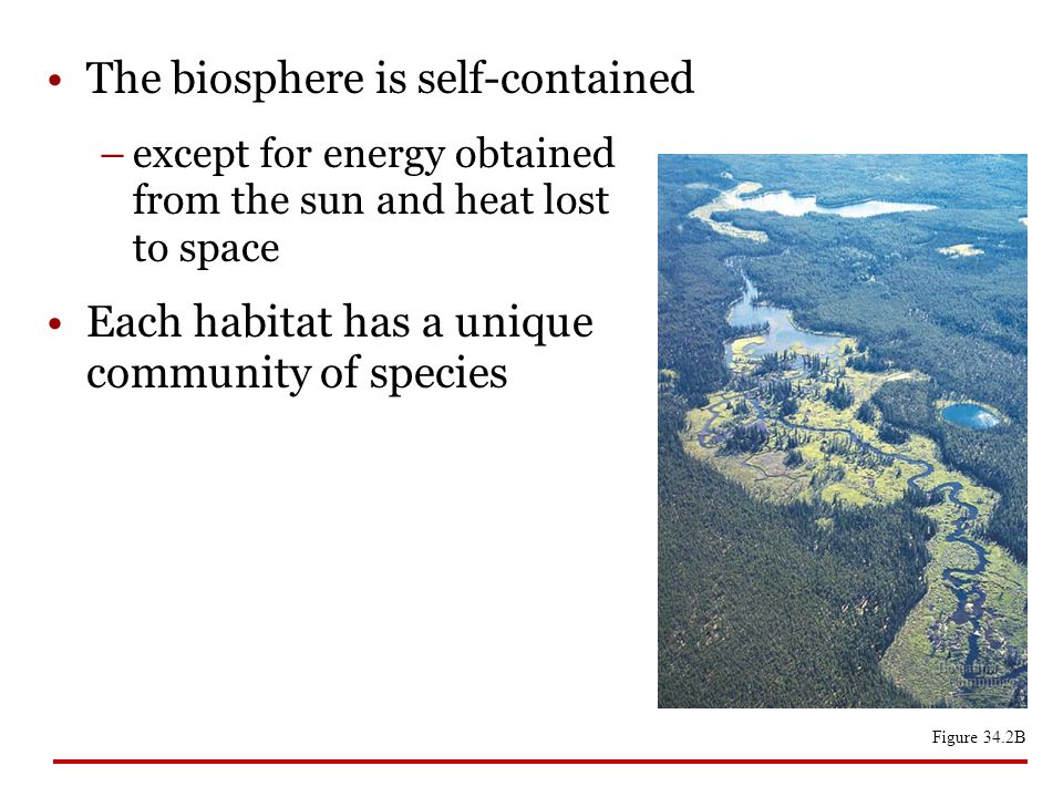 The biosphere is self-contained
