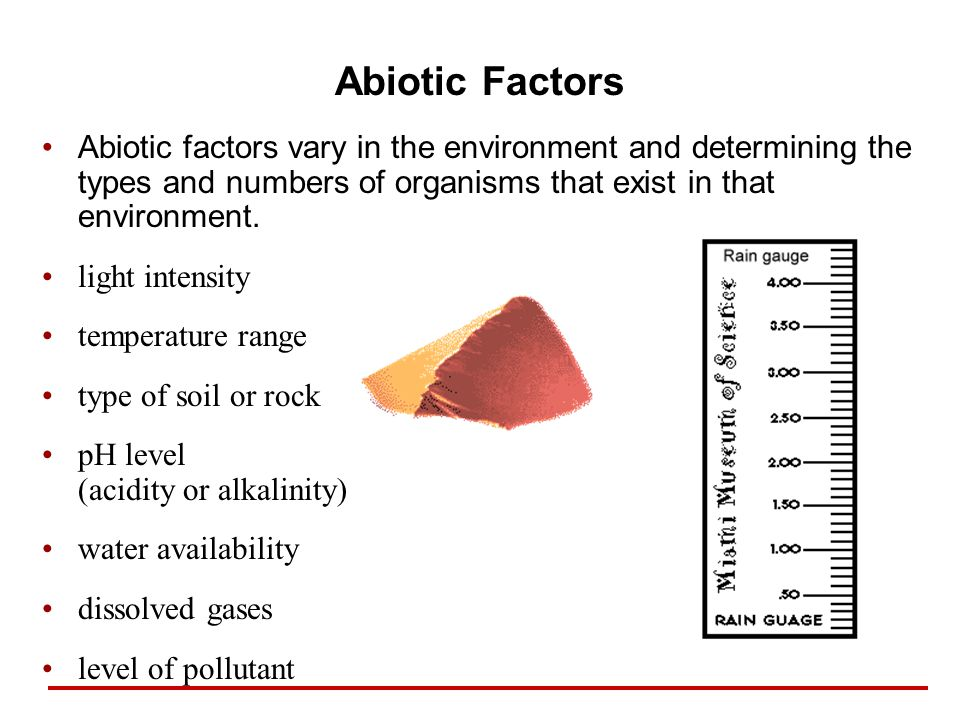 Abiotic Factors Abiotic factors vary in the environment and determining the types and numbers of organisms that exist in that environment.