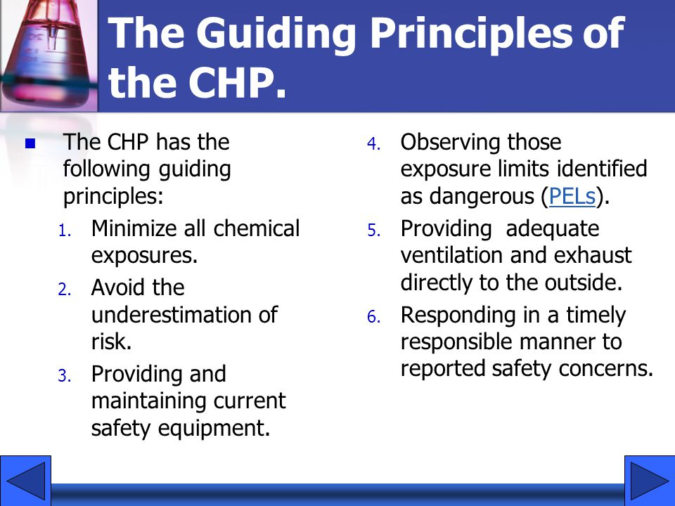 The Guiding Principles of the CHP.