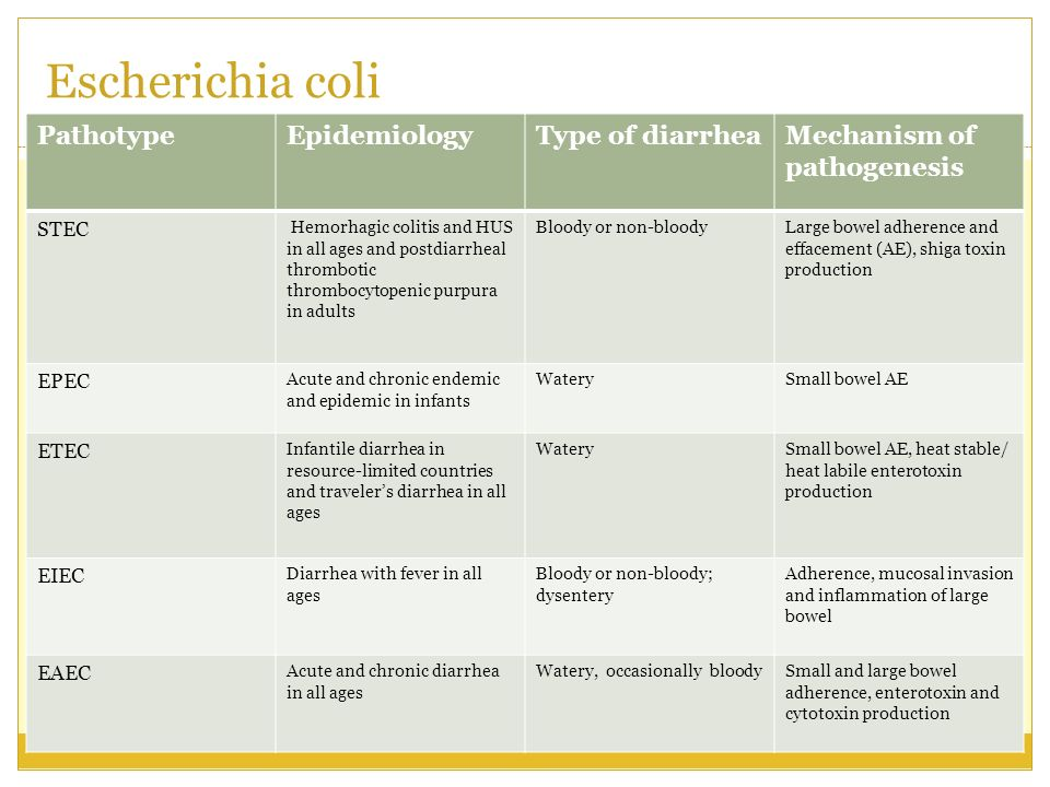 Escherichia coli Pathotype Epidemiology Type of diarrhea