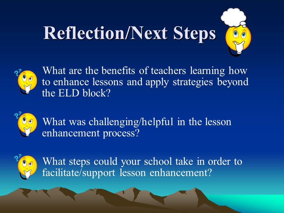 Reflection/Next Steps