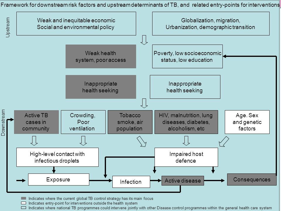 Framework for downstream risk factors and upstream determinants of TB, and related entry-points for interventions