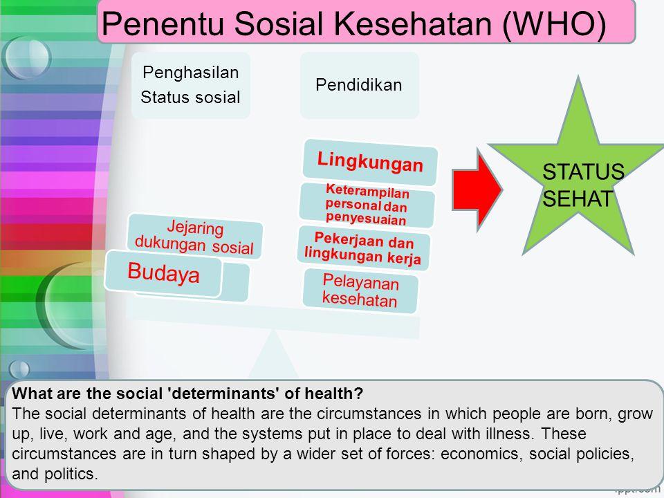 Penentu Sosial Kesehatan (WHO)