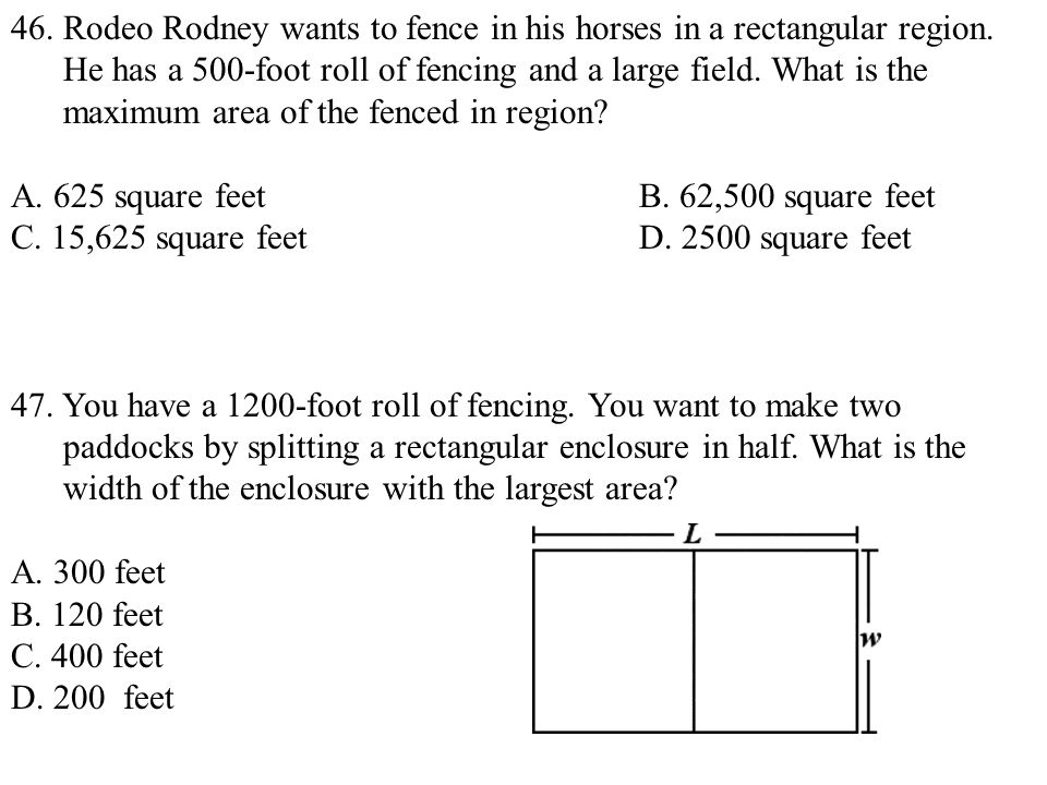 46. Rodeo Rodney wants to fence in his horses in a rectangular region.