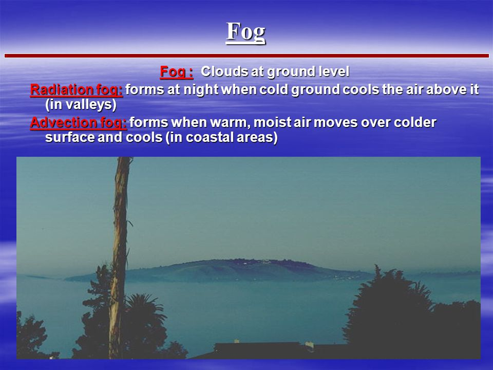 Fog : Clouds at ground level