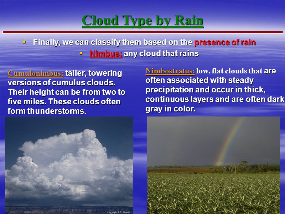 Cloud Type by Rain Finally, we can classify them based on the presence of rain. Nimbus: any cloud that rains.