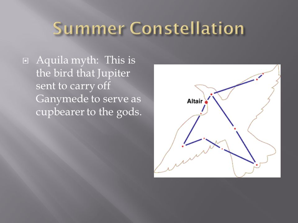 Summer Constellation Aquila myth: This is the bird that Jupiter sent to carry off Ganymede to serve as cupbearer to the gods.