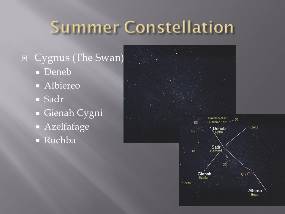 Summer Constellation Cygnus (The Swan) Deneb Albiereo Sadr