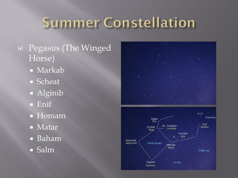 Summer Constellation Pegasus (The Winged Horse) Markab Scheat Alginib