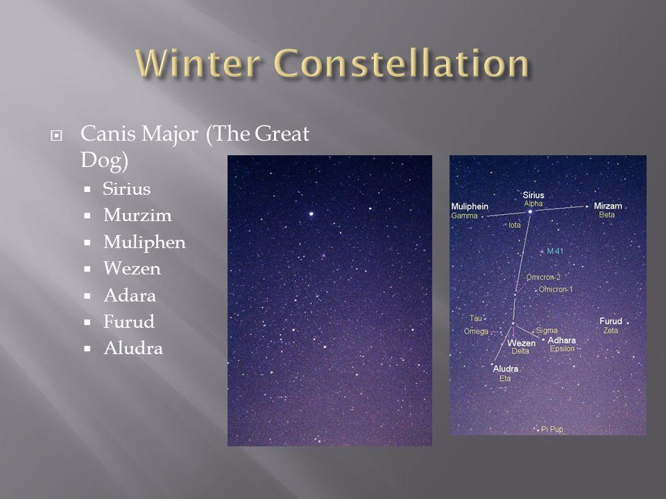 Winter Constellation Canis Major (The Great Dog) Sirius Murzim