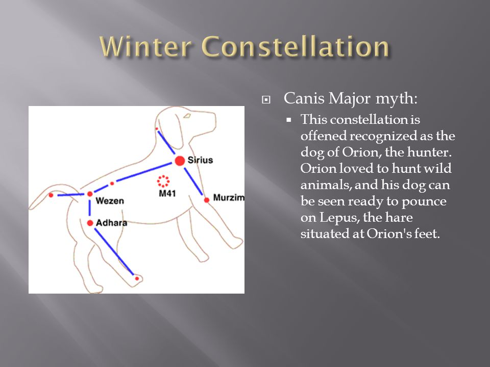 Winter Constellation Canis Major myth:
