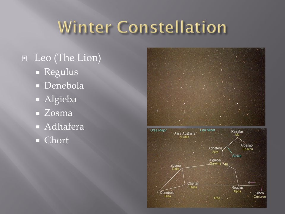 Winter Constellation Leo (The Lion) Regulus Denebola Algieba Zosma