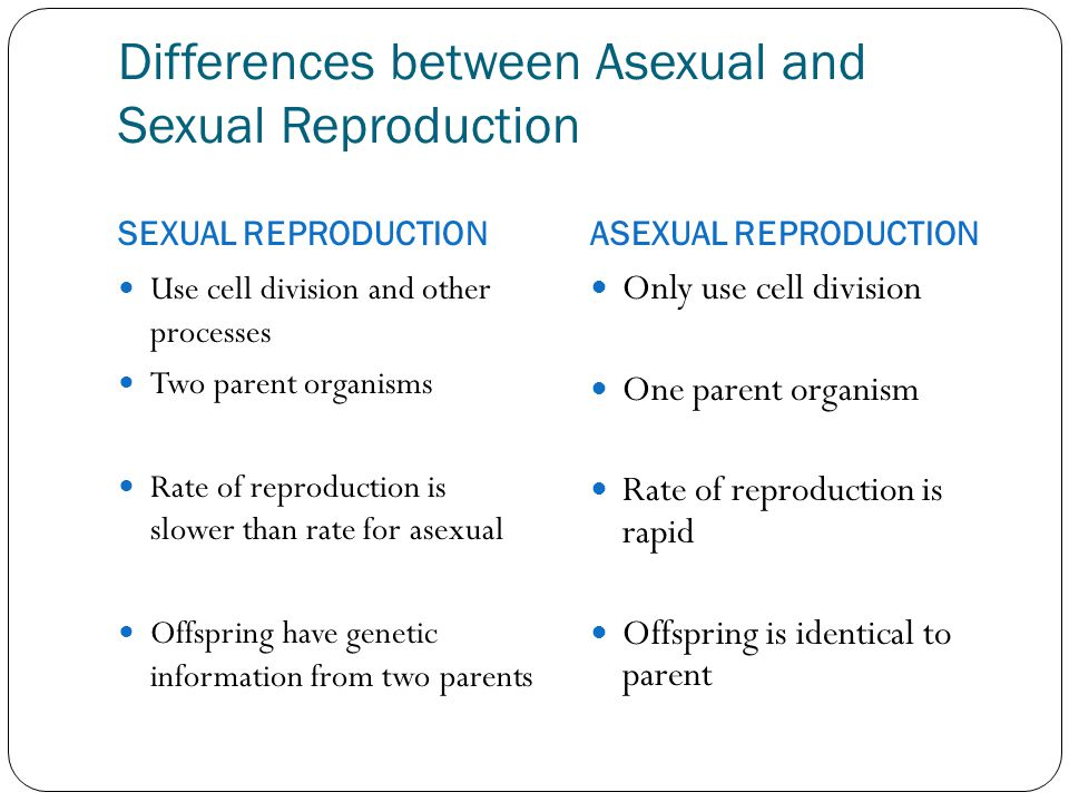 differences asexual and sexual reproduction