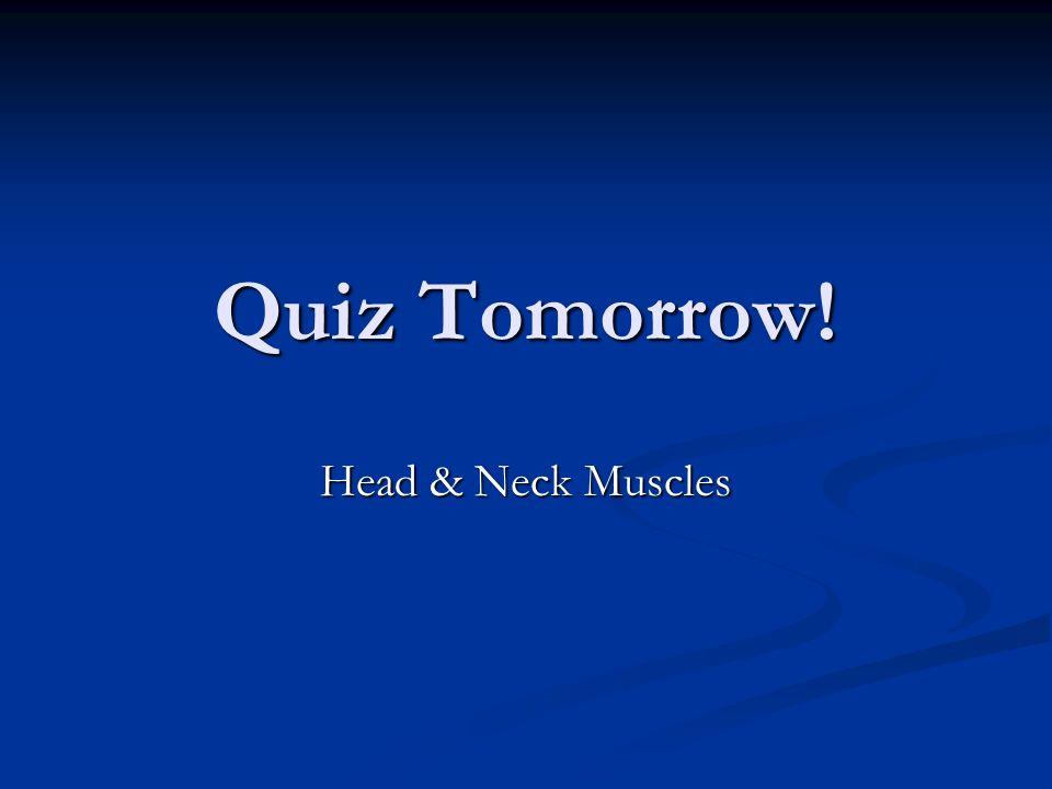 Quiz Tomorrow! Head & Neck Muscles