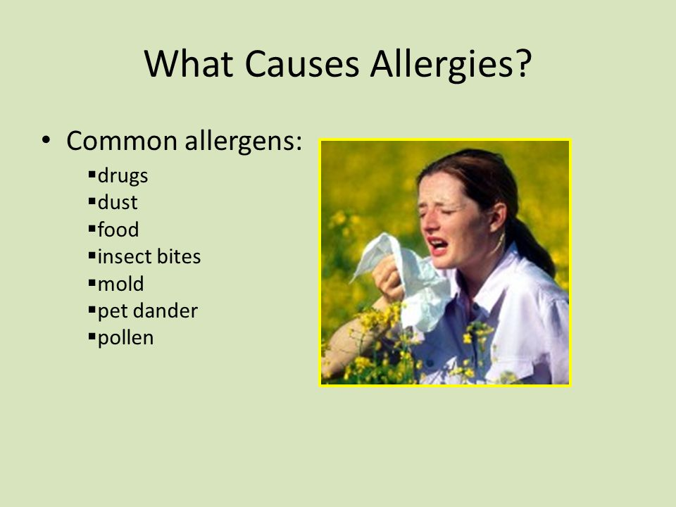 What Causes Allergies Common allergens: drugs dust food insect bites