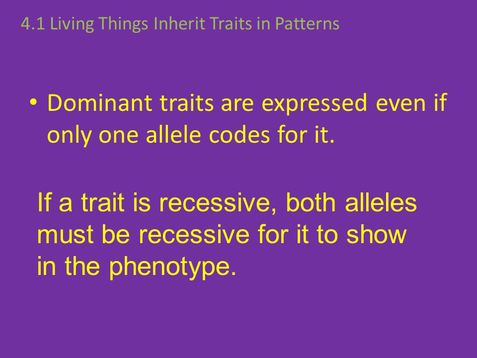 Dominant traits are expressed even if only one allele codes for it.