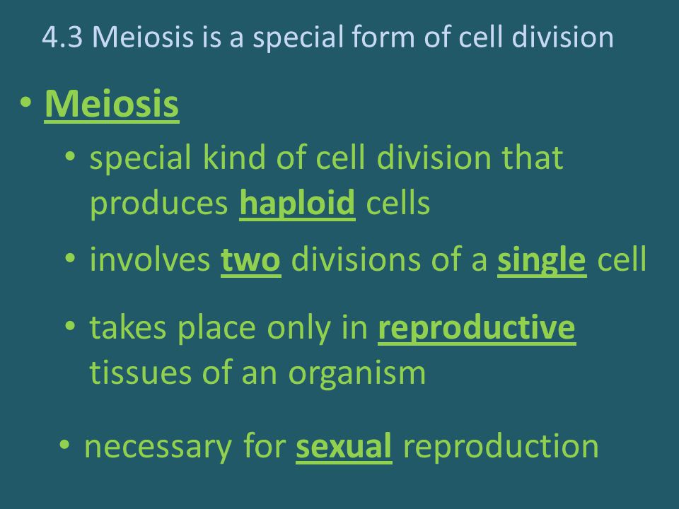 4.3 Meiosis is a special form of cell division