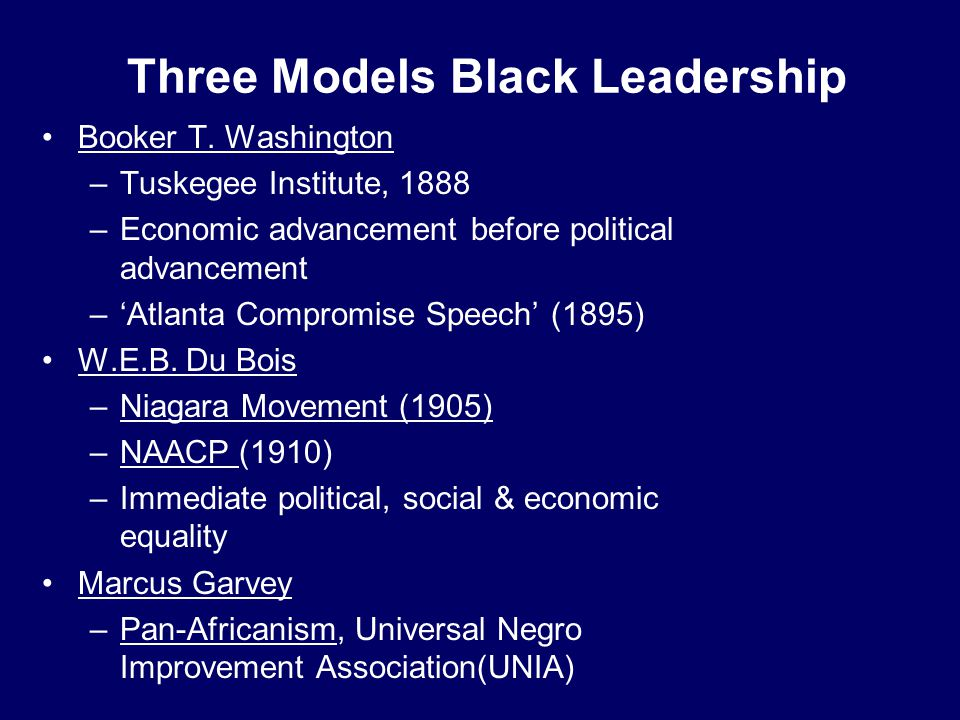 Three Models Black Leadership