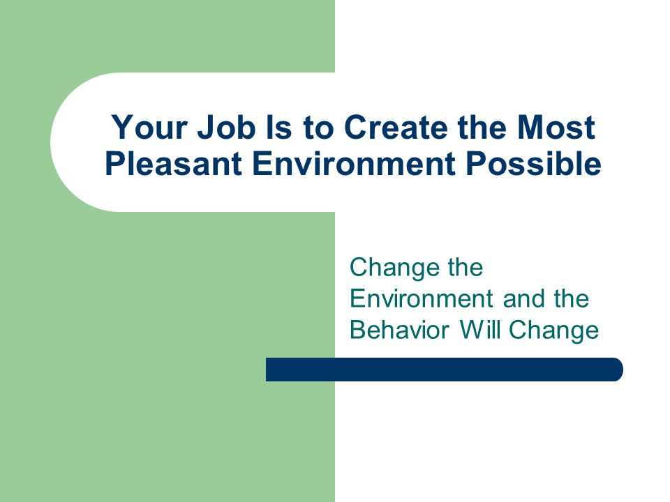 Your Job Is to Create the Most Pleasant Environment Possible